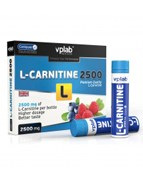 VP LAB L-Carnitine 2500  (25 g)